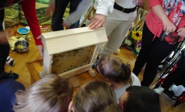 2017.03.31 Fascynujący świat pszczół _14