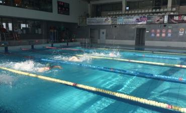 2017.11.16 IV mistrzostwa szkół specjalnych w pływaniu