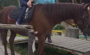2018.09.27 Spotkanie z końmi
